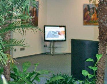 Büro Ansicht Pflanzen Display