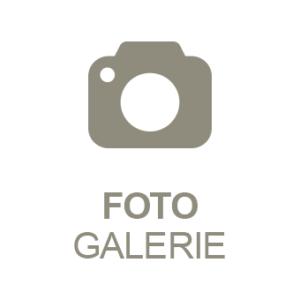 PRESTIGEenterprise AppBaukasten Modul Foto-Galerie