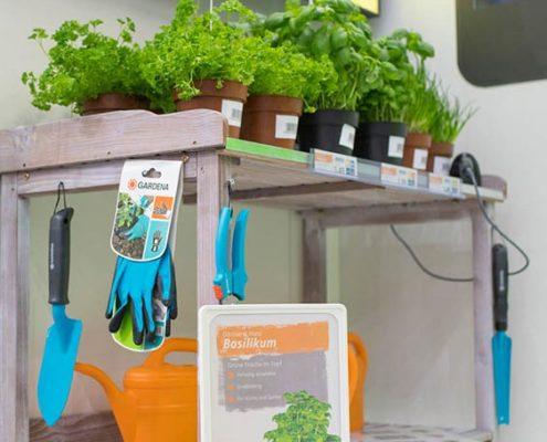 Pflanzregal mit Kräutern und Gießkanne und DIN A4 Angebotsplakat im Aufsteller