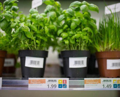 DIY Etiketten am Kräuterregal zeigen Preisauszeichnung mit Plakatdruckprogramm PRESTIGEenterprise