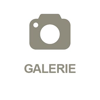 App Modul Galerie