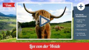 Live TV für Fleischherkunft
