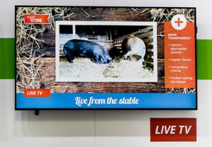 Live TV am POS auf der EuroCIS 2019