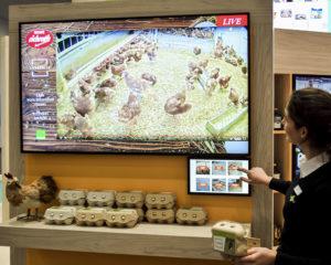 tierwohl.tv - die Livestream-Lösung für mehr Kundenvertrauen und Transparenz am POS